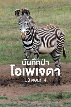 Goodtv_ANM_2564-07-11