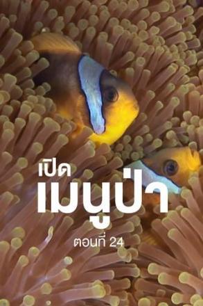 Goodtv_ANM_2564-07-19