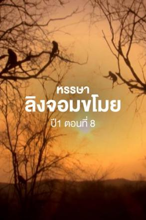 Goodtv_ANM_2564-07-44