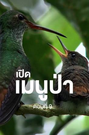 goodtv_ANM_2564-05-39