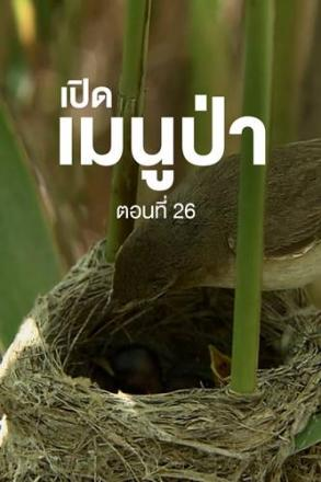 goodtv_ANM_2564-05-48