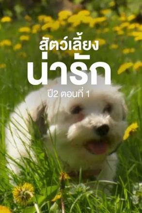 goodtv_ANM_2564-05-79