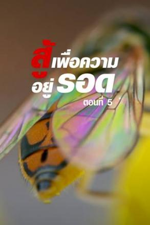 goodtv_SRL_2564-05-71